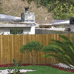 Cedar Fence 1